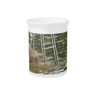 Escalera que desciende en la agua de mar jarra de beber