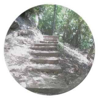 Escaleras de la piedra arenisca plato para fiesta