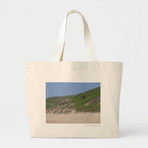 Escaleras de la playa bolsa de mano