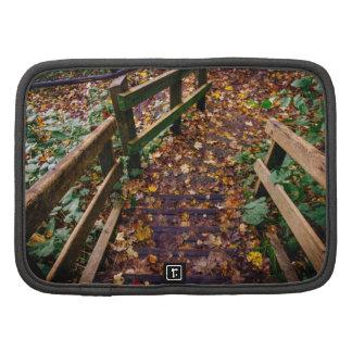 Escaleras de madera en un paisaje del otoño organizador