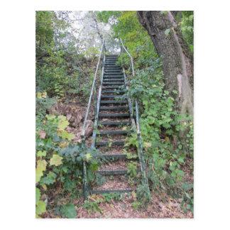 Escaleras del Riverbank Postales
