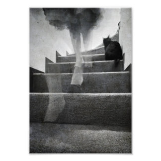 Escaleras - impresión fotografías