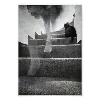 Escaleras - impresión fotografias