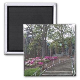 Escaleras que llevan hacia el edificio biomédico e iman de nevera