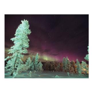 Escandinavia, Finlandia, Laponia, Kakslauttanen, Postal