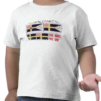 Escandinavo señala por medio de una bandera, de un camisetas