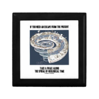 Escape From Present Walk Along Geological Time Jewelry Box