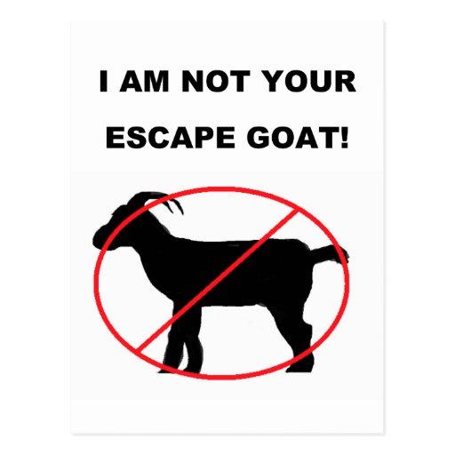 Escape Goat Postcard