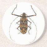 Escarabajo Acrocinus Longimanus del Harlequin Posavasos Manualidades