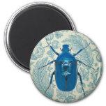 Escarabajo azul en las hojas azules plumosas imanes de nevera