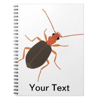 Escarabajo de bombardero