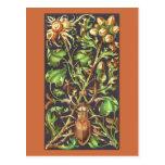 Escarabajo de cuernos en Brown Postales