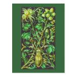 Escarabajo de cuernos en oro y la impresión verde  tarjeta postal