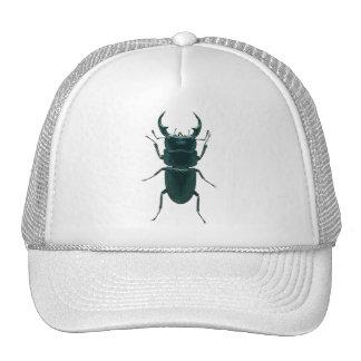 Escarabajo de estiércol negro grande gorro de camionero