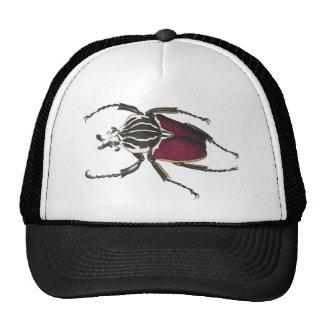 Escarabajo de Goliat Gorros Bordados