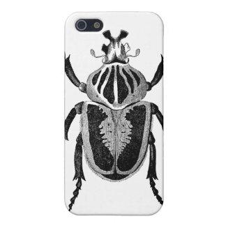 Escarabajo de Goliat iPhone 5 Carcasa