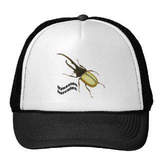 Escarabajo de Hércules Gorras De Camionero