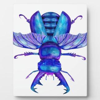 Escarabajo de macho azul placa de madera