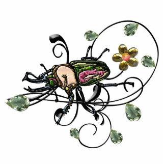 Escarabajo de macho del arco iris esculturas fotográficas