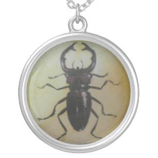 Escarabajo de macho gigante collar plateado