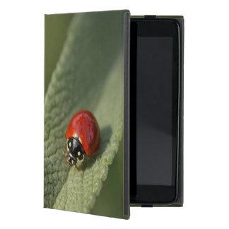 Escarabajo de mariquita convergente en el sabio de iPad mini funda