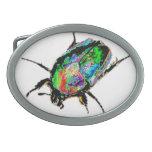 Escarabajo del escarabajo hebillas de cinturón