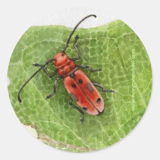 Escarabajo del perforador del Milkweed Pegatina Redonda