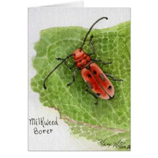 Escarabajo del perforador del Milkweed Tarjeta De Felicitación