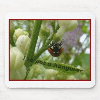 Escarabajo divertido Lustiger Käfer de Hangover.JP Tapete De Ratones