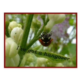 Escarabajo divertido Lustiger Käfer de Postales
