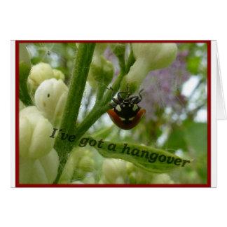 Escarabajo divertido Lustiger Käfer de Tarjeta De Felicitación