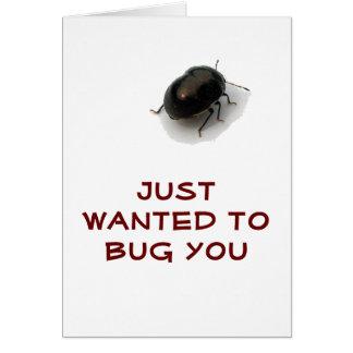 Escarabajo encapuchado minucioso negro felicitacion