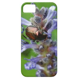 Escarabajo japonés en la flor púrpura de la punta iPhone 5 funda