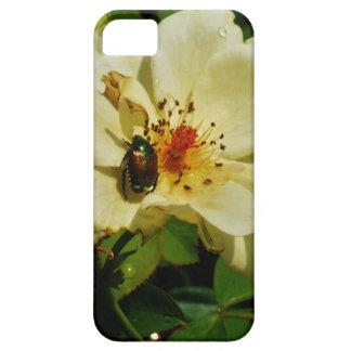 Escarabajo japonés verde en el rosa amarillo iPhone 5 protector