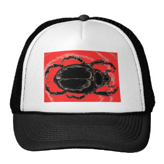 escarabajo negro gorros