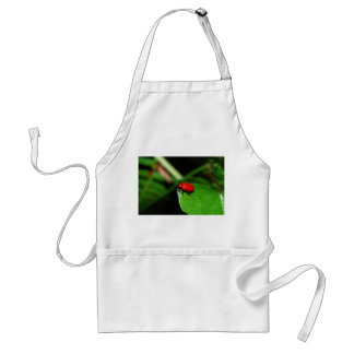 Escarabajo rojo brillante en la hoja verde delantal