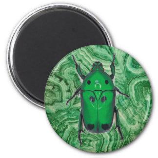 Escarabajo verde hermoso en la malaquita imán redondo 5 cm