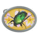 Escarabajo y Pulmeria del escarabajo Hebilla De Cinturón