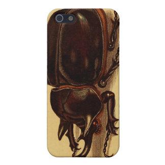 Escarabajos de rinoceronte iPhone 5 funda