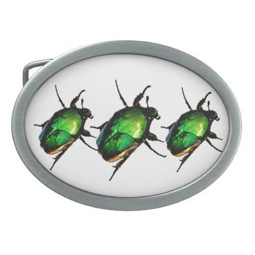 Escarabajos del escarabajo hebillas de cinturon ovales