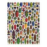 Escarabajos ilustrados vintage colorido postal