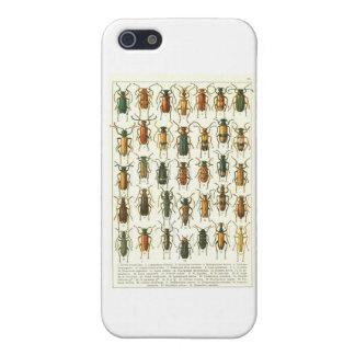 escarabajos iPhone 5 carcasas