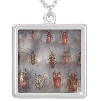 Escarabajos - los sospechosos usuales grimpolas
