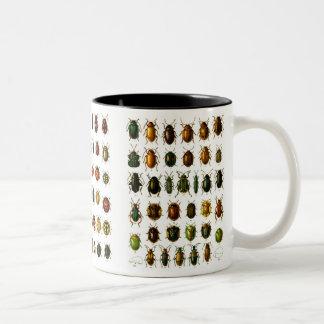 Escarabajos Tazas De Café