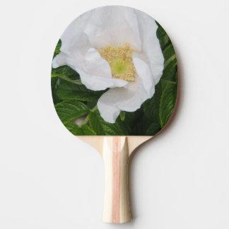 Escaramujo blanco pala de tenis de mesa