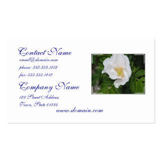 Escaramujo blanco tarjeta de visita