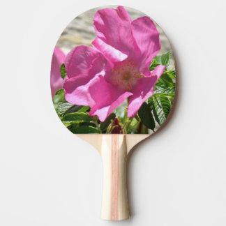 Escaramujo rosado pala de ping pong