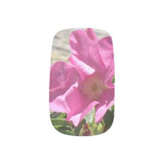 Escaramujo rosado pegatinas para manicura