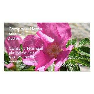 Escaramujo rosado tarjeta personal