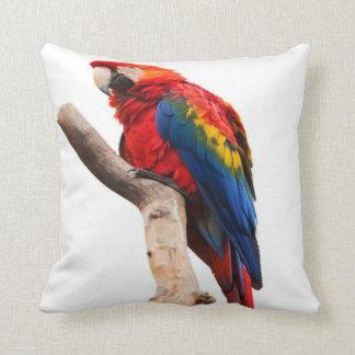escarlata del macaw almohada